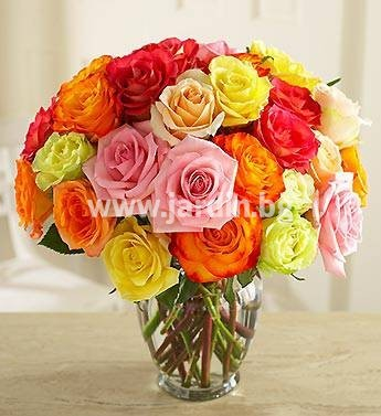 46_delivery_flowers-to-bulgaria-roses