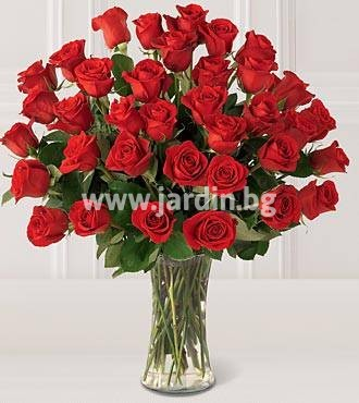 47_delivery_flowers-to-bulgaria-roses