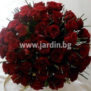 """101 roses """"Searing Glow"""""""