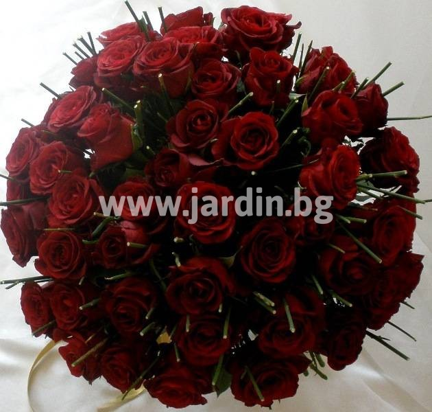 цветя бургас (1)