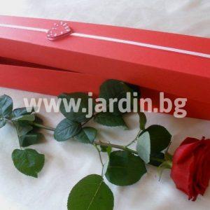 Роза в кутия