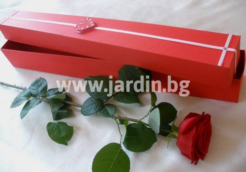 delivery roses Bulgaria (2)