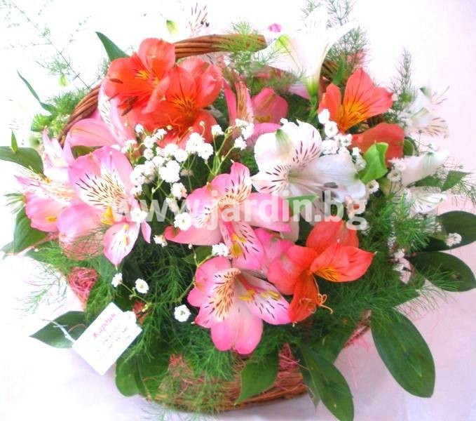 -delivery-to-bulgaria-basket-delivery-flowers