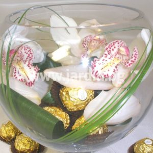 Cymbidium and candy FERRERO ROSHER