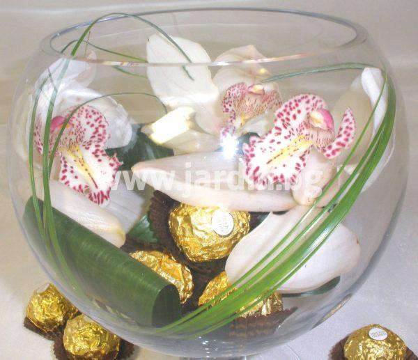 цимбидиум и бонбони FERRERO ROSHER