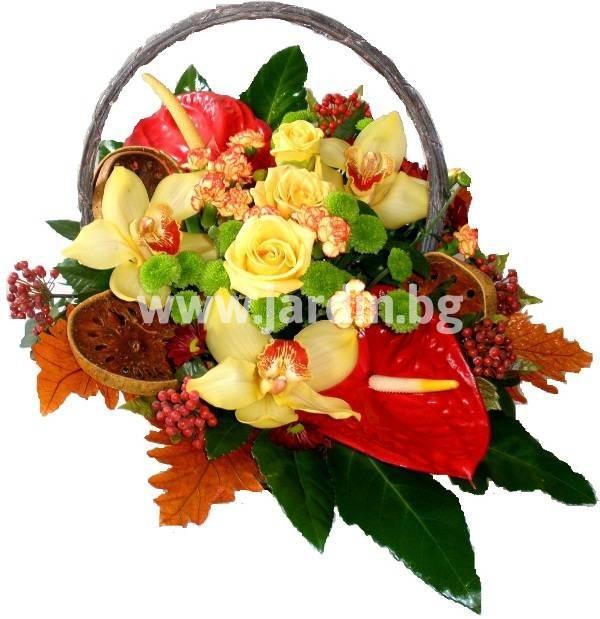 _цветя_софия_бургас (2)