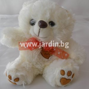 Teddy Bear 7