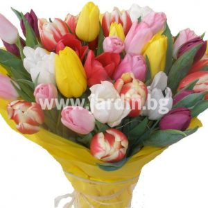 "bouquet ""Flirt of the tulips"""