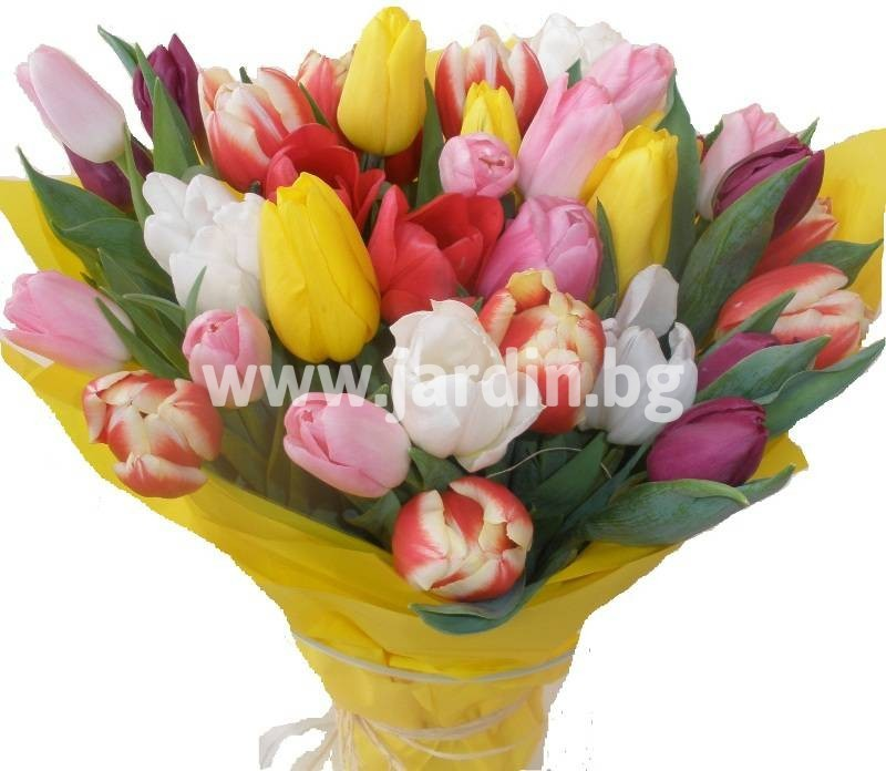 -delivery-to-bulgaria-tulips-delivery-bouquet_ Копие