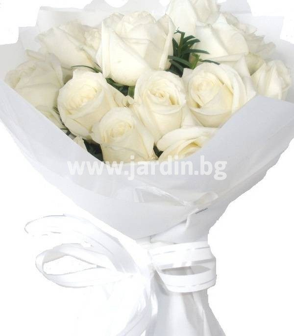 Нежни бели рози