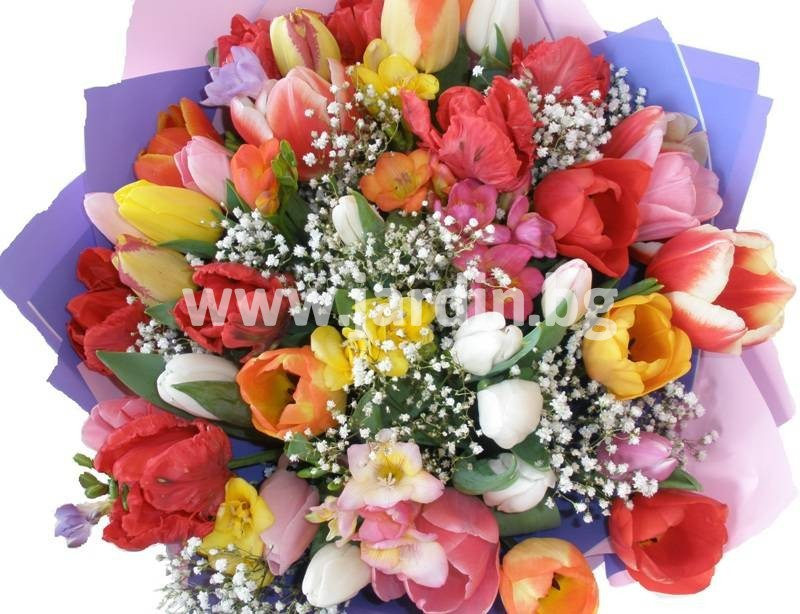 -delivery-to-bulgaria-tulips-delivery-bouquet_(19) –