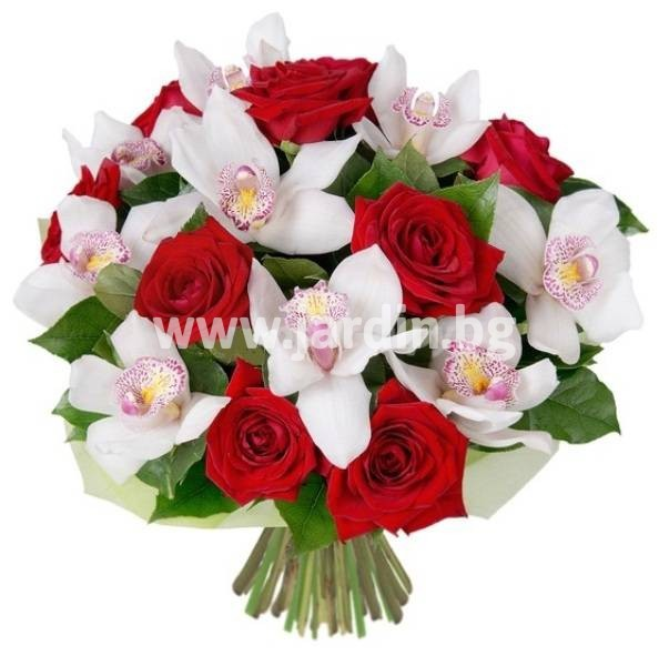 roses-delivery-to-bulgaria (13)