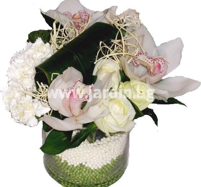 _цветов_болгариа_св._влас