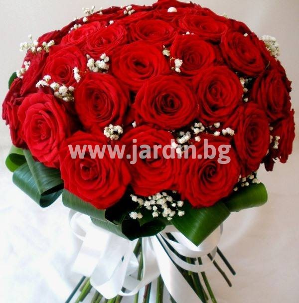 -delivery-to-bulgaria-roses (14)