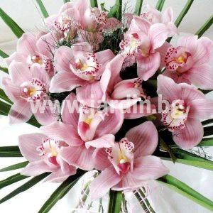 букет орхидеи