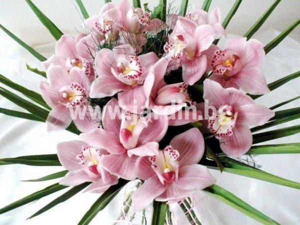 Букет Орхидеи №1