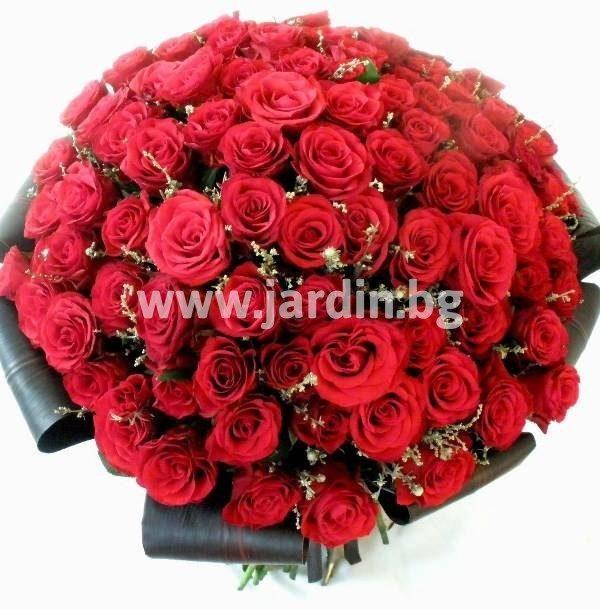 """101 рози """"Пленително"""""""