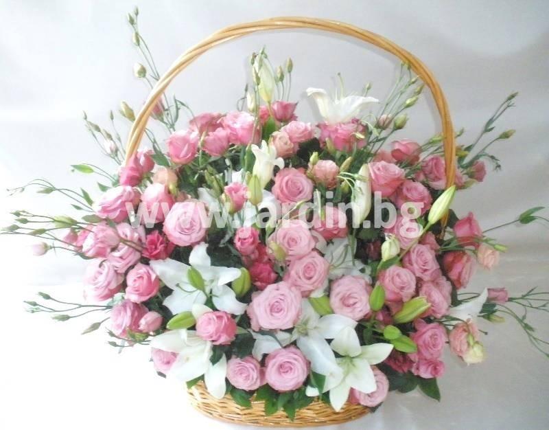 цветов Болгария (1)