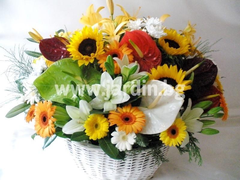 -на-цветя-кошници-бургас_слънчев-бряг (1!)