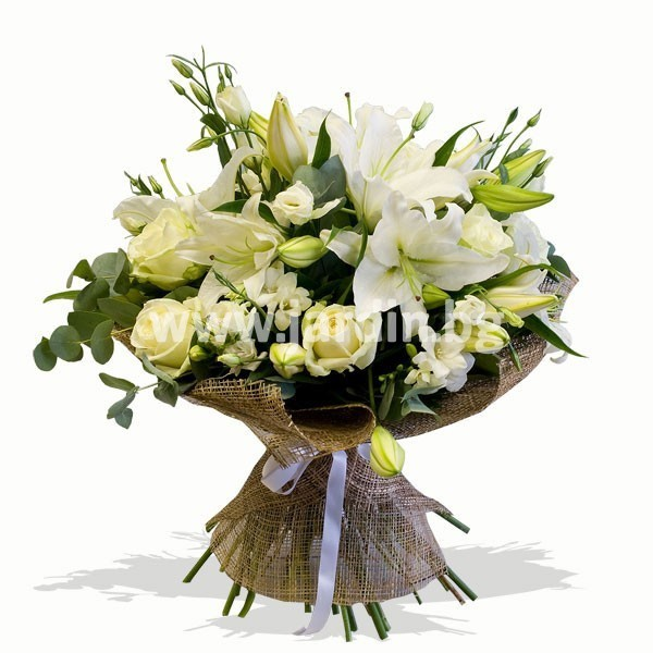 beli rozi, lilium