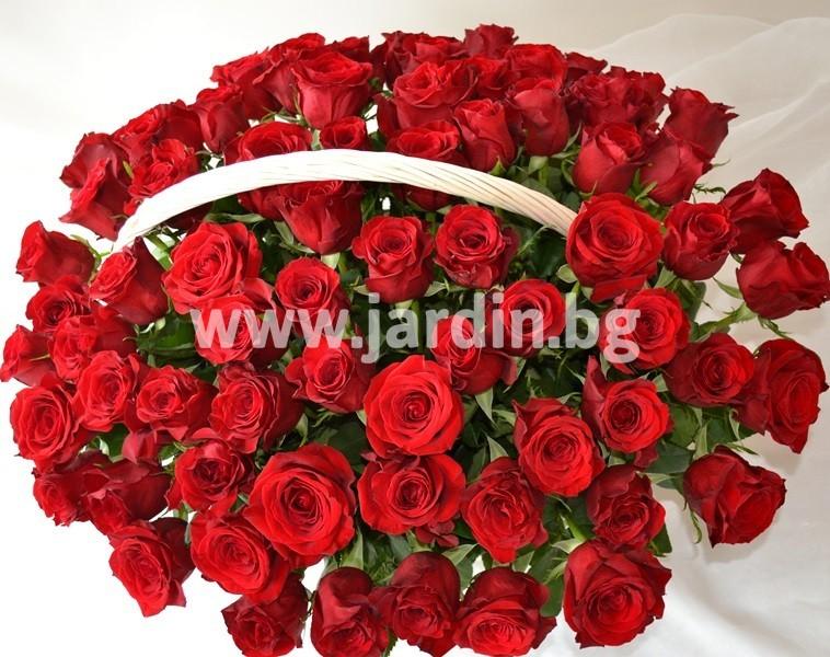 _червени_рози