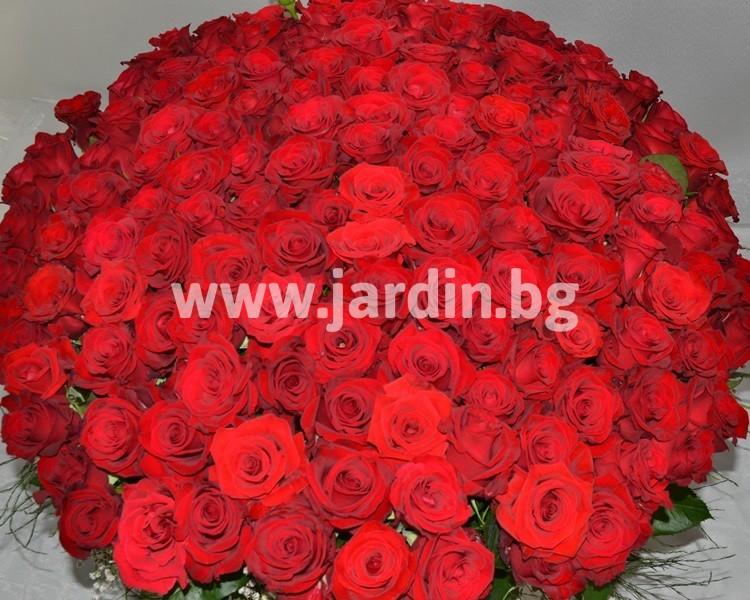 basket_red_roses (6)