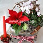 Коледна кошничка