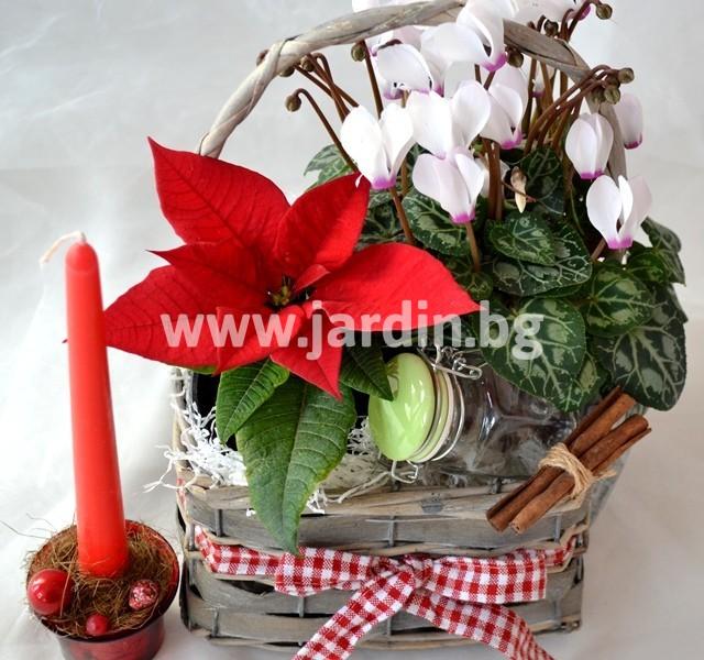 Christmas_decoration (2)