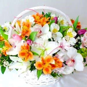 "basket ""white velvet"""