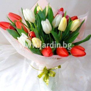 bouquet of tulips №12