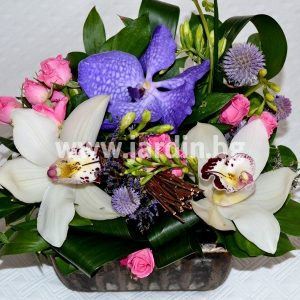 Cimbidium and Vanda композиция