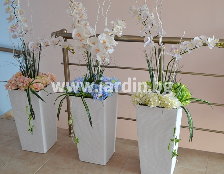 orchids_for_interior (1)