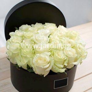 Бели Рози в кутия №20