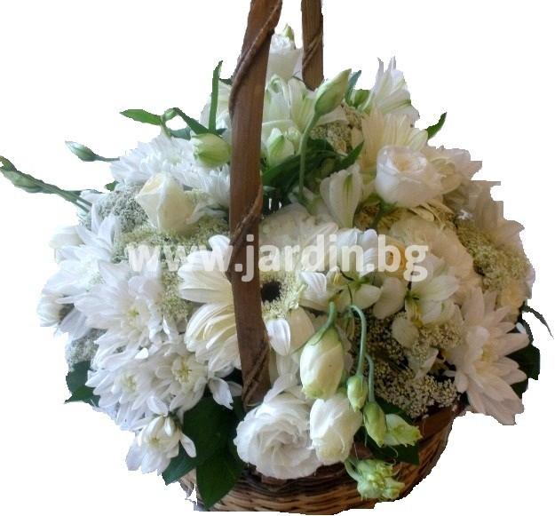 -цветя-бургас-варна-пловдив-софия (3)