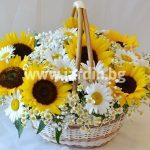 Basket Sunflowers