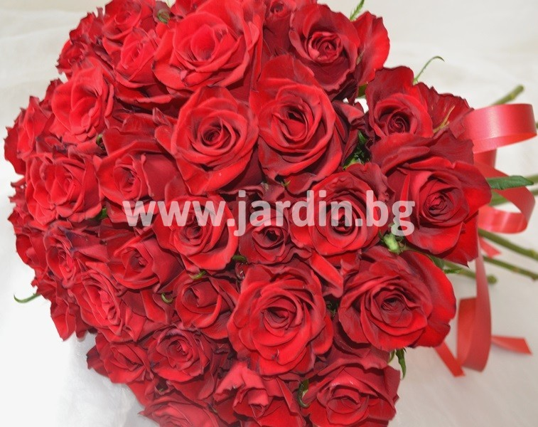 red_roses (1)