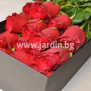 Red roses in box №4