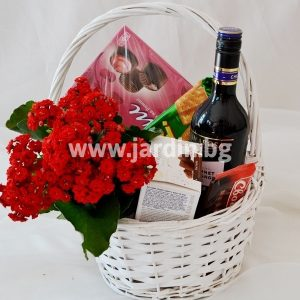 "Basket ""wine and flower in a pot"""