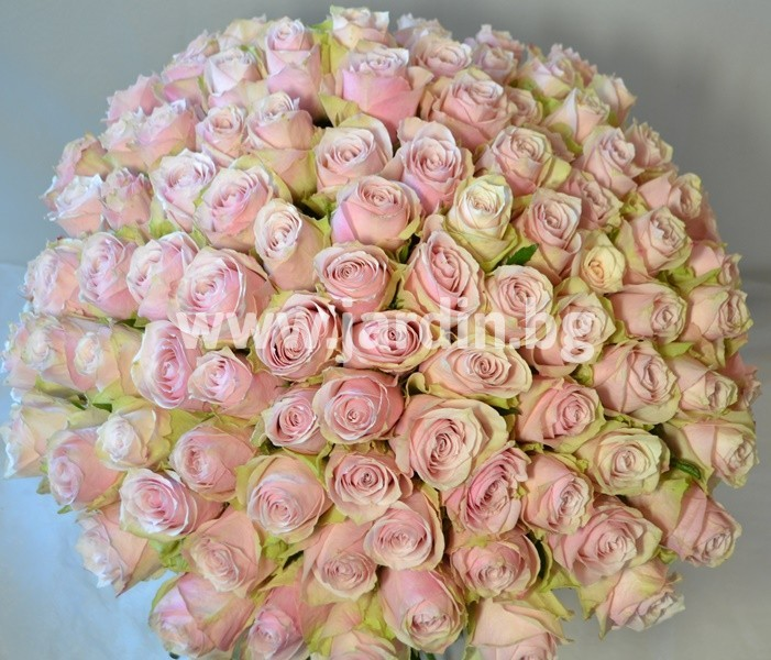 roses_delivery_burgas (1)