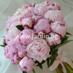 Bouquet Peonies №3