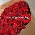 roses Ecuador