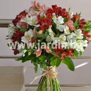 Bouquet of Alstroemeria №3