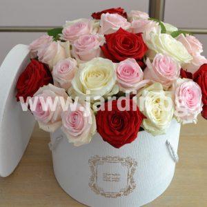 Рози в кутия №20