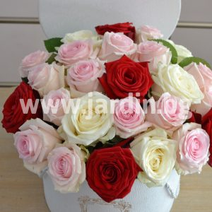 Roses in a box №20