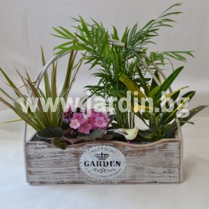 Potted flowers Garden