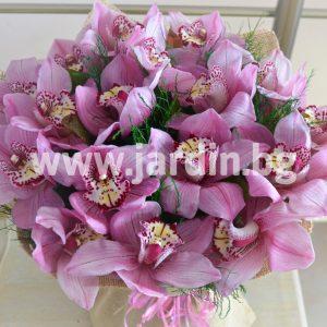 Букет Орхидеи №2