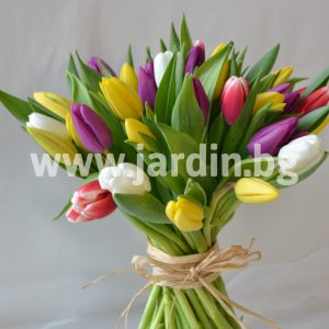 bouquet of tulips №16