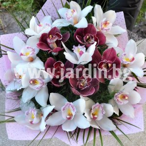 Bouquet Orchids №3