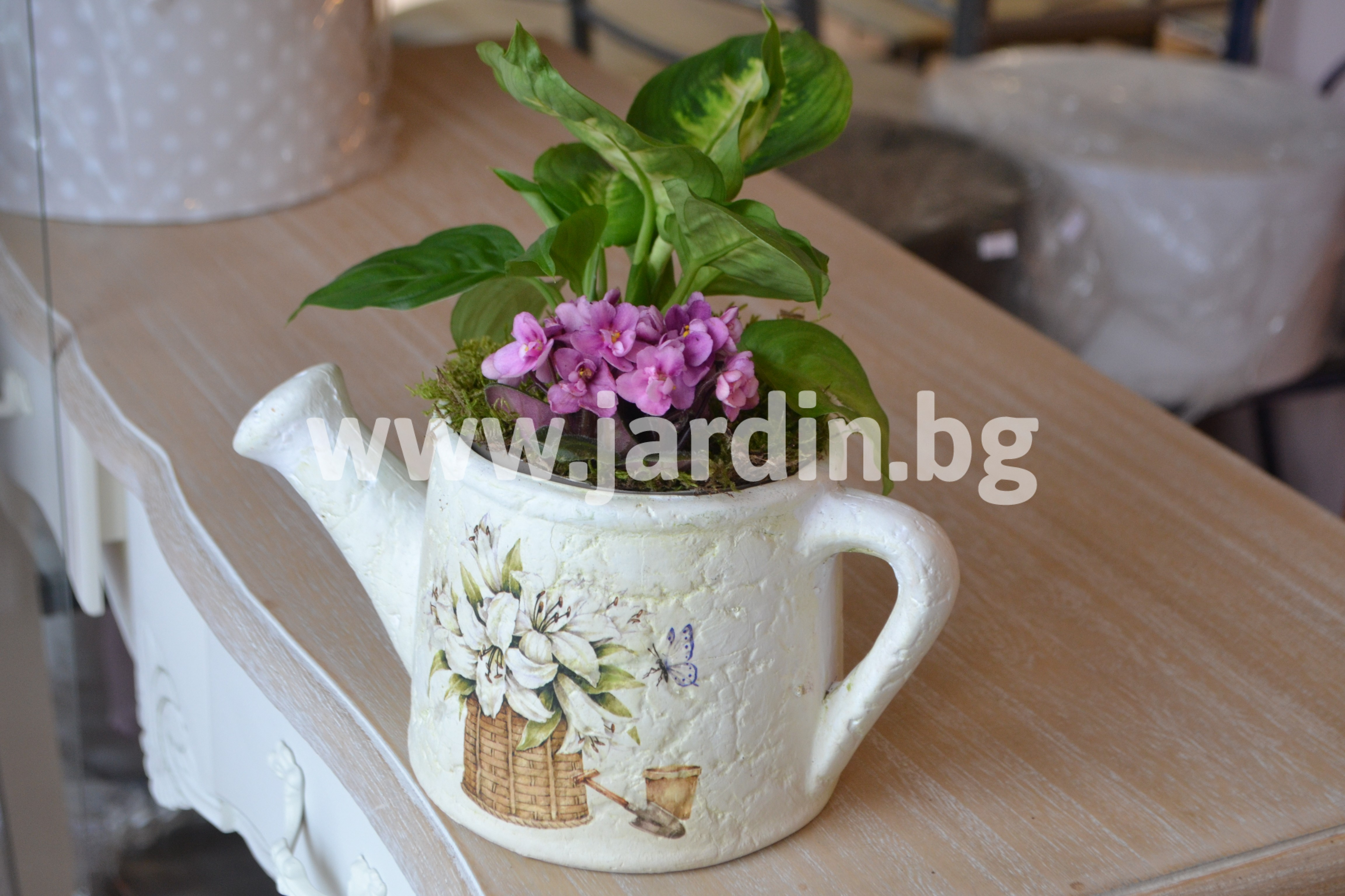 саксийни-цветя-от-жардин