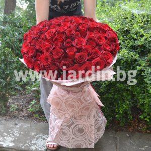 Букет Красных Роз №11